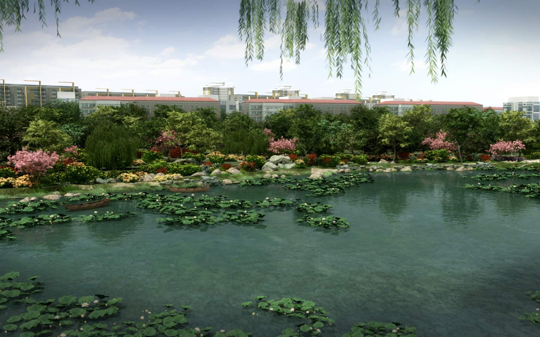 景观---荷塘