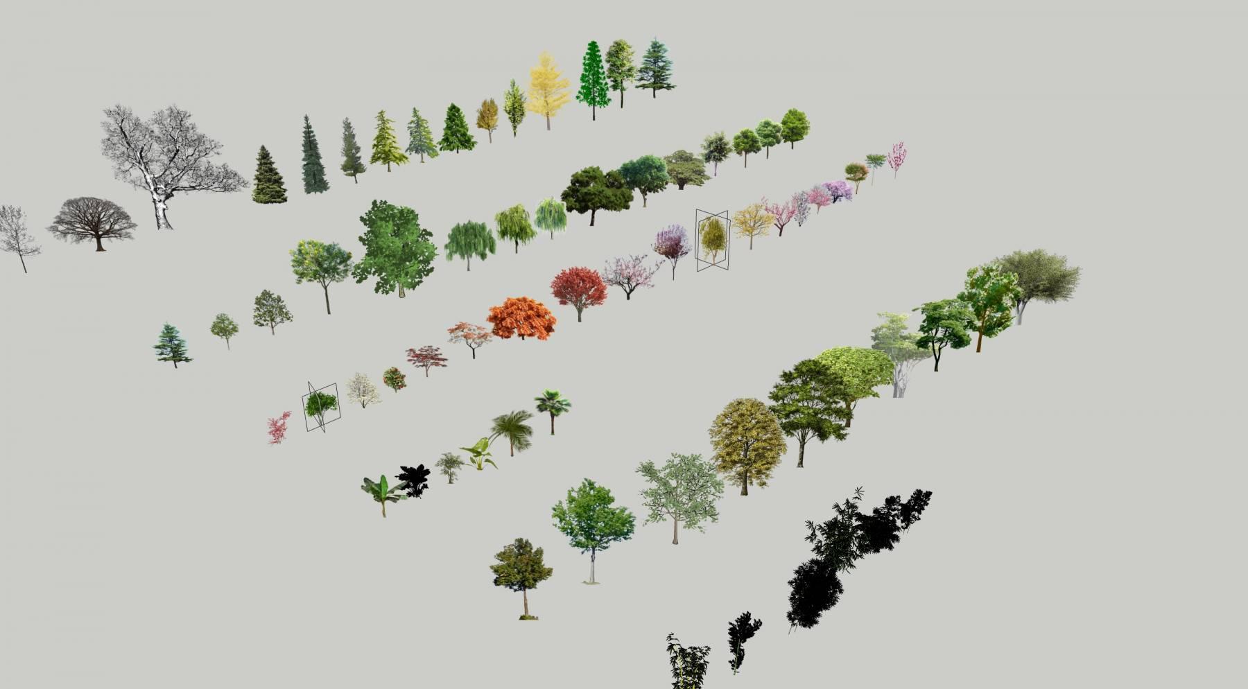 超全树木合集